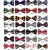 Fashion Unisex Silk Bow Ties