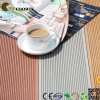 Eco-Friendly Outdoor Wood Plastic Composite Decking/Floor (TS-01)