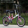 Wholesale Parent-Child Bike Mother -Child Bicycle for School or Shopping