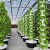 Plastic Film Agriculture Greenhouse