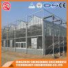 Commercial Venlo Galvanized Steel Frame Glass Green House