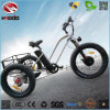 Wholesale 500W Electric Bike Battery Fat Tire Tricycle with Pedal
