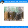 Factory Supply Mealworm