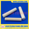 Precision Alumina Ceramic Plunger Machining