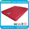 Sleep Well Queen Size Spring Mattress