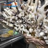 Producing Frozen Food Squid Skewer