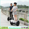 CE Approved Popular Eswing E Bicycle with New Design
