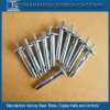 Galvanized Carbon Steel Ceiling Safety Anchors