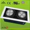 LED PAR30 Down Light