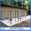 Welded Wire Dog Boarding Kennel Building