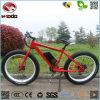 Electric Beach Dirt Bike Electric Bicycle Conversion Kit for Sale