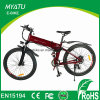 Pedal Assistant Electric Folding Mountain Bike with Shock Absorber