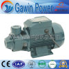 0.75HP Peripheral Qb Series Electric Clean Water Pump