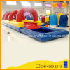 Colorful Inflatable Water Slides with Pool (AQ1018)
