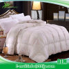 Soft Twin Cheap Comforter for Big Lots