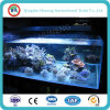 3-19mm Low Iron Float Glass for Fish Tank