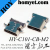 Offset Type 3.1 USB C Type Connector with DIP+SMT
