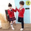 School Uniform Children School Uniforms Wholesale High Quanlity School Uniform