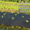 Spunbonded Nonwoven Agricultural Weed Mat Ground Cover
