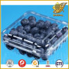 100% Non-Toxic Transparent Pet Sheet for Cake and Fruit Packing