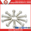 Stainless Steel 304 Pan Head Philip Screws