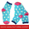 Women′s Causal Cotton Sock (UBM1060)