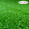 Artificial Grass for Hocky Court
