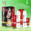 3.55 Dark Brown and Rose Hair Highlights Color Hair Care