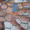 Hexagonal Galvanized Chicken Wire Mesh