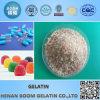 Halal Cow Skin Gelatin Granular