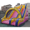 Double Inflatable Slide/China Inflatable Slide