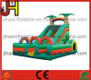 Double Lane Inflatable Forest Water Slide for Kids Fun
