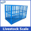 Digital Scale Pig Scale Livestock Scale True-Test Livestock Scale