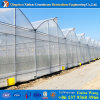 Manufacturer Specialized in Agriculture Plastic Film Greenhouse