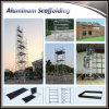 Made in China Portable Types of Scaffolding