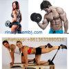 Anabolic Testosterone Steroids 4-Chlorodehydromethyltestosterone for Bodybuilding CAS 2446-23-3