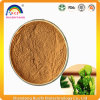 Natural Nopal Cactus Juice Extract Powder