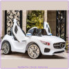 Merceds Benz Concept Toy Car with Upward Doors Fashion Design