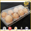 PVC Blister Film in Roll for Eggs Packaging