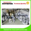 Custom Handpaint Ceramic Figurine for Home Ornament