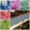 Color Coated Steel Coil/ PPGI Steel Coil Flower Pattern Design