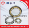 Cylindrical Roller Bearing (N206 Nj206 NF206 Nup206 Nu206)