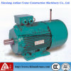 Yej Electric AC Three Phase Motor with Brake Device