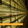 Tainrui Design Broiler Equipment Broiler Battery Cage for Sale