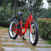 Lady 48V 13ah 500W 8fun Motor Fat Tire Electric Bike