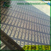 Good Sanded Film Faced Plywood/Timber/Buildming Materials for Construction