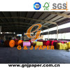 Colour Woodfree Bank Paper in Sheet with Good Price