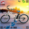 Fat Tire Electric Woman Beach Cruiser Motorcycle with Disk Brake