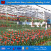 2017 High Quality Multi Span Agricultural Film Greenhouse for Sale