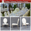 Chinese Factory New Design Stainless Steel Luxury Wedding Chairs Yc-Ss53